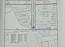 ارضين شبك بالقرب من مسقط في الرميس شمال بأرخص الاسعار
