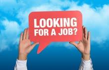 باحث عن وظيفة موارد بشرية/إدارية