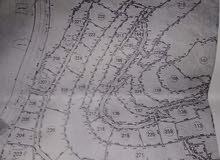 ارض في خليل في منطقة كريسه مساحة 1 دونم رقم قطعه 227
