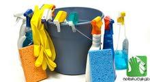 شركة النسور لخدمات التنظيف ومكافحة الحشرات