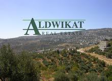 ارض مميزة للبيع في اجمل مناطق دابوق (الحمارية) , مساحة الارض 1069م