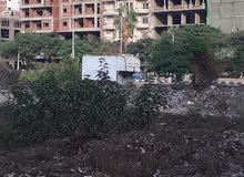 قطعة أرض مميزة تانى نمرة من شارع الجيش فى أبوالليل