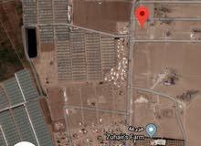 قطعة أرض تجاري على شارع 30 م وشارع12م في الطنيب خلف جامعة الإسراء 52الف نهائي