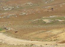 ارض 540م في شفابدران على حد مرج الفرس مباشره