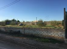 قطعة ارض في غرب تاجورا وادي الربيع