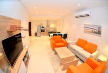 Brand New 2 Bedroom modernized furnished apartment for Rent in Zinj  : 39550193