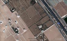 ارض 500 م الطنيب حوض 2/السكة الغربي مقابل جامعة الإسراء
