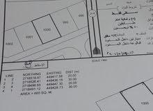 اراضي للبيع 3اراضي في الاسرار بن عمر 94484883