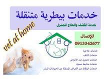 للكشف وعلاج وتطعيم القطط