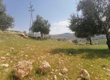 ارض  للبيع مميزه دونمين منطقة شاليهات
