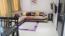 1 Bed Fully Furnished Apartment for RENT in Hidd  - 280 BD/- Inclusive : 36223394