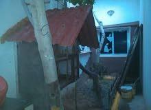 منزل في تاجوراء بالقرب من جزيرة الاندلسي طريق الشط
