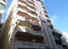 شقة 120م بشاطىء النخيل بالاسكندرية بالرووف