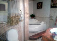 for rent in Cairo Sheraton apartment