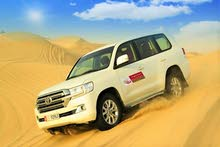 Evening Desert Safari in Abu Dhabi with Dune Bashing & BBQ Dinner