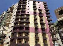 special apartment in Zagazig for sale