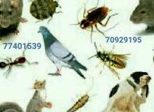 مكافحة جميع الحشرات والزواحف والقوارض