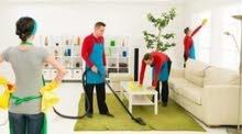 خدمات تنظيف الفلل والمنازل