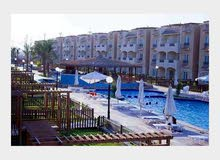 apartment is up for sale located in Suez