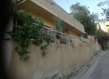 منزل بيت مستقل حي معصوم بالقرب من جامع الفلاح كل الخدمات جنب البيت