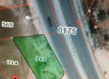 ارض تجاري طولي للبيع ـ شارع عمان اربد ـ مقابل الهابي لاند ـ حوض دبات ابو النصر من المالك مباشرة