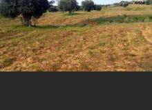 قطعة أرض للبيع في ترهونا 1000