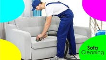 Sofa and Carpet Cleaning Services