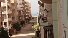 امتلك شقة هاى لوكس بشاطئ النخيل (6 اكتوبر) بجوار شــارع مدخل بوابة (2) مباشرة موقع متميز ترى البحر