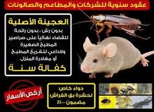 مكافحة حشرات وبارخص الأسعار وبخدمه تعقيم خدمه 24 ساعه بحولي