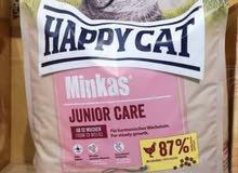 اكل قطط