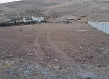 ارض 8 دونم في صروت