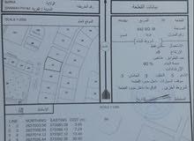 أرض للبيع سكنية في بركاء السوادي الصريمة 642م