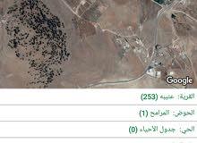 ارض المساحة 4 دونمات للبيع جرش عنيبة