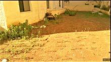 شقة في تلاع العلي115م وحديقة250م