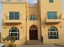 First Floor apartment for rent - Khalifa City