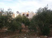 بيت مستقل نظام فيلا مستويين للبيع في ابو نصير