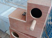 صناديق خشبية للطيور
