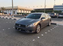 Nissan Maxima 2010 For sale -  color