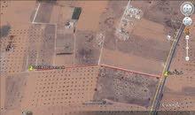 قطعة ارض 800 متر في مقسم طريق السبيعة غريان