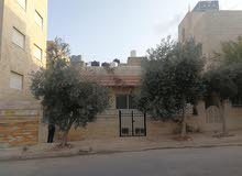Villa in Amman Abu Nsair for rent