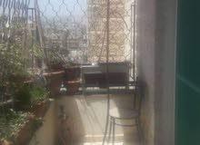 شقه في عدن