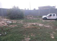 ارض في ابوروية علي طريق  نادي النجم الريفي ابوروية مباشرة واجهة 30 متر والمساحه 1000 متر