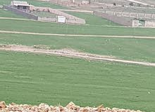 قطعة ارض خلف جامعة الاسراء