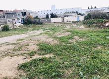 أرض للبيع بنعسان دوار الحوش في ولاية بن عروس