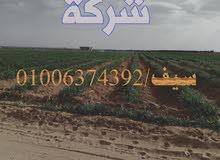 تم بدء المرحله الثانيه من ارض الناصريه العياط ارض تتميز بجميع الخدمات