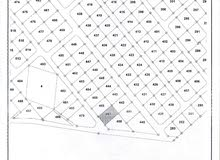 قطعة ارض بمساحة 1050 م2 حوض 7 الموارس - القسطل بالقرب من قرية الاندلسية