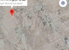 بركاء  حي عاصم  المرحله الثانيه  ارض سكنيه شبه زاويه نظيفة ومستوية رقم الارض 231