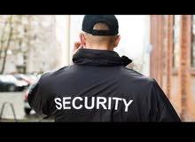 مطلوب أفراد امن الدوام 12ساعة قابل إلى تحويل عقد أهلى او حكومي