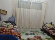 بنظام الغرف الماستر وبسعر مميز متوفر سكن للشباب العرب مطلوب 1500 للغرفة شامل أعم