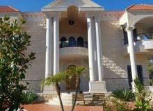 فيلا تصميمها متل القصر مع مسبح و حديقه  في سوق الغرب